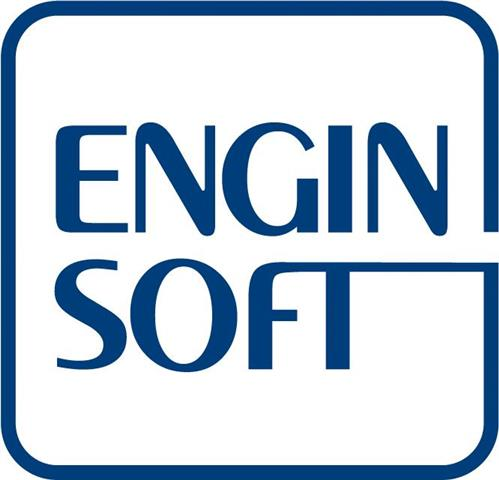 Enginsoft s.p.a.